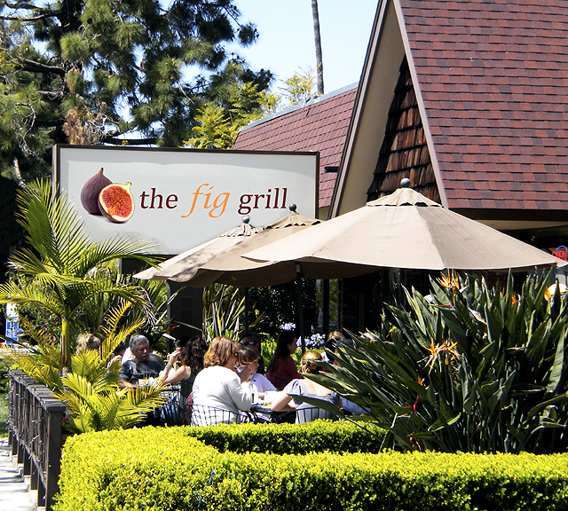 thefiggrill patio